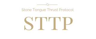 STTP email logo